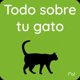 Todo sobre tu gato
